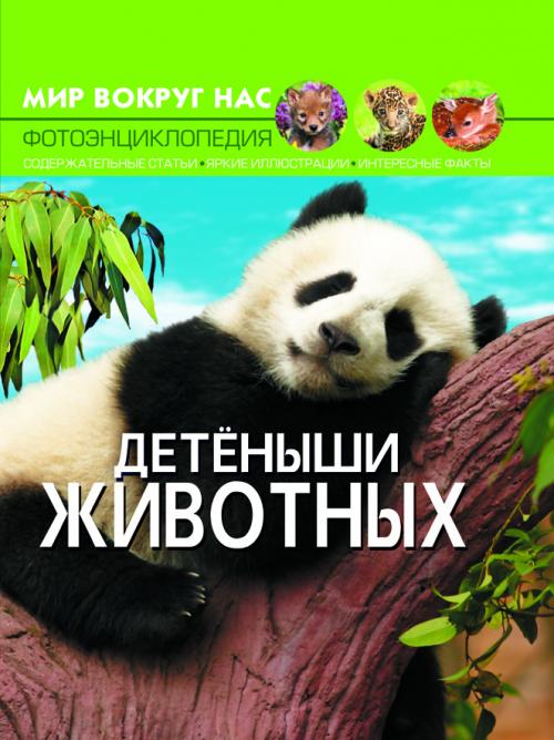 Купить Познавательная литература, Мир вокруг нас. Детеныши животных, Crystal Book