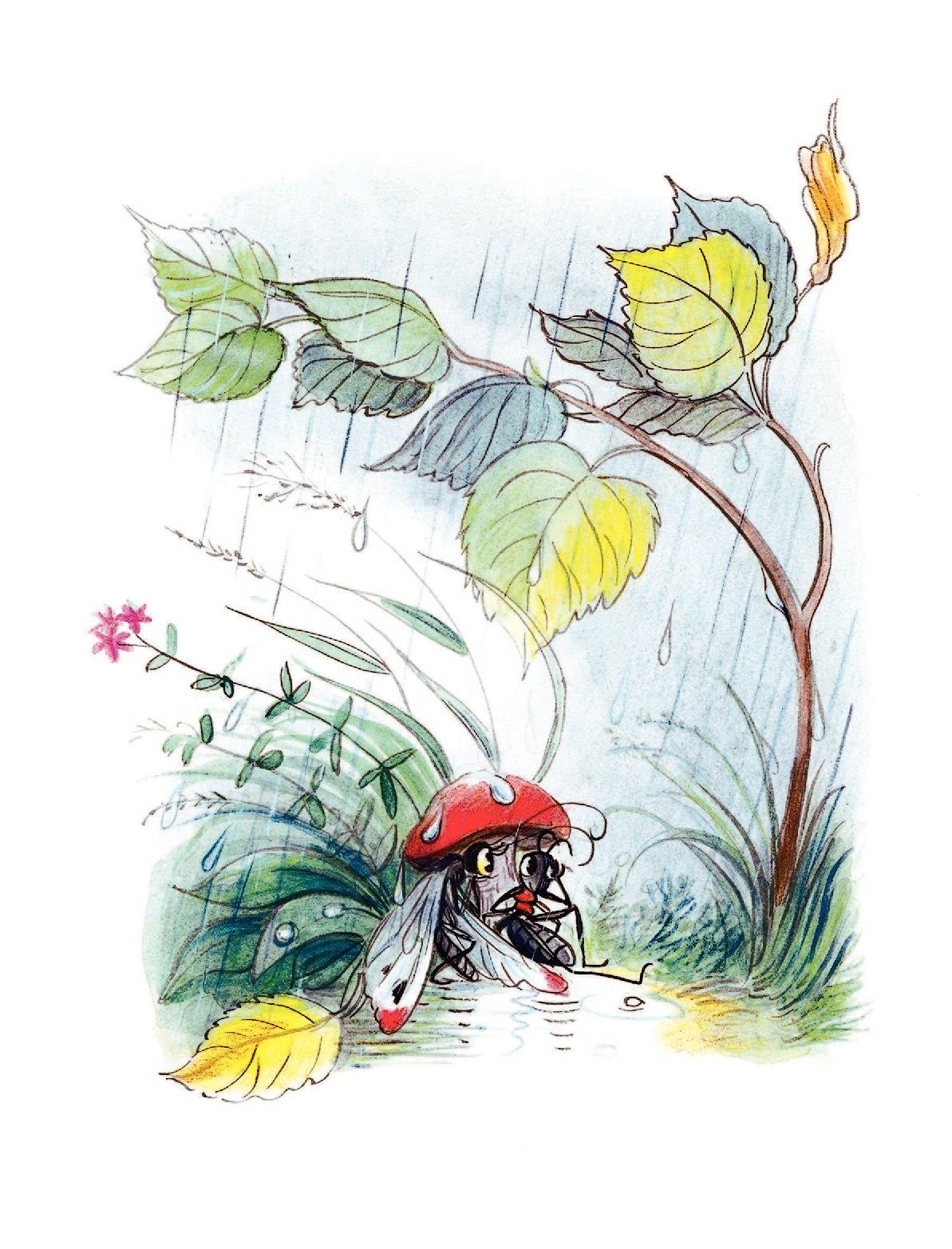 итальянцу картинки к сказке сутеева под грибом полностью воспроизведены как