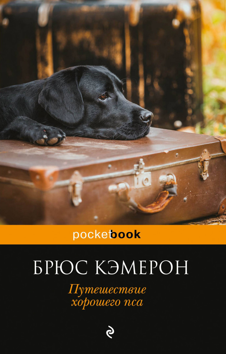 Купить Любовный роман, Путешествие хорошего пса, Эксмо