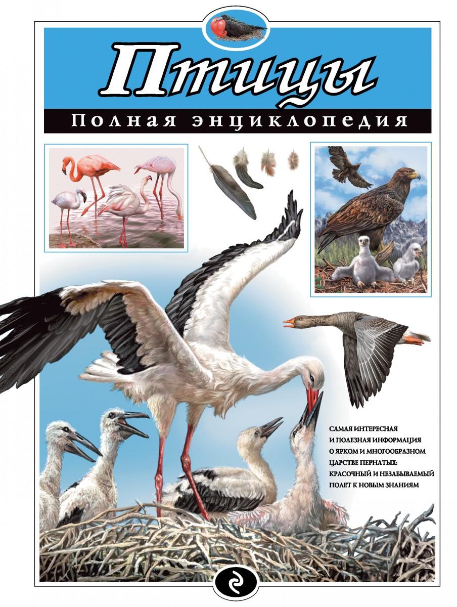 Купить Птицы. Полная энциклопедия, Эксмо