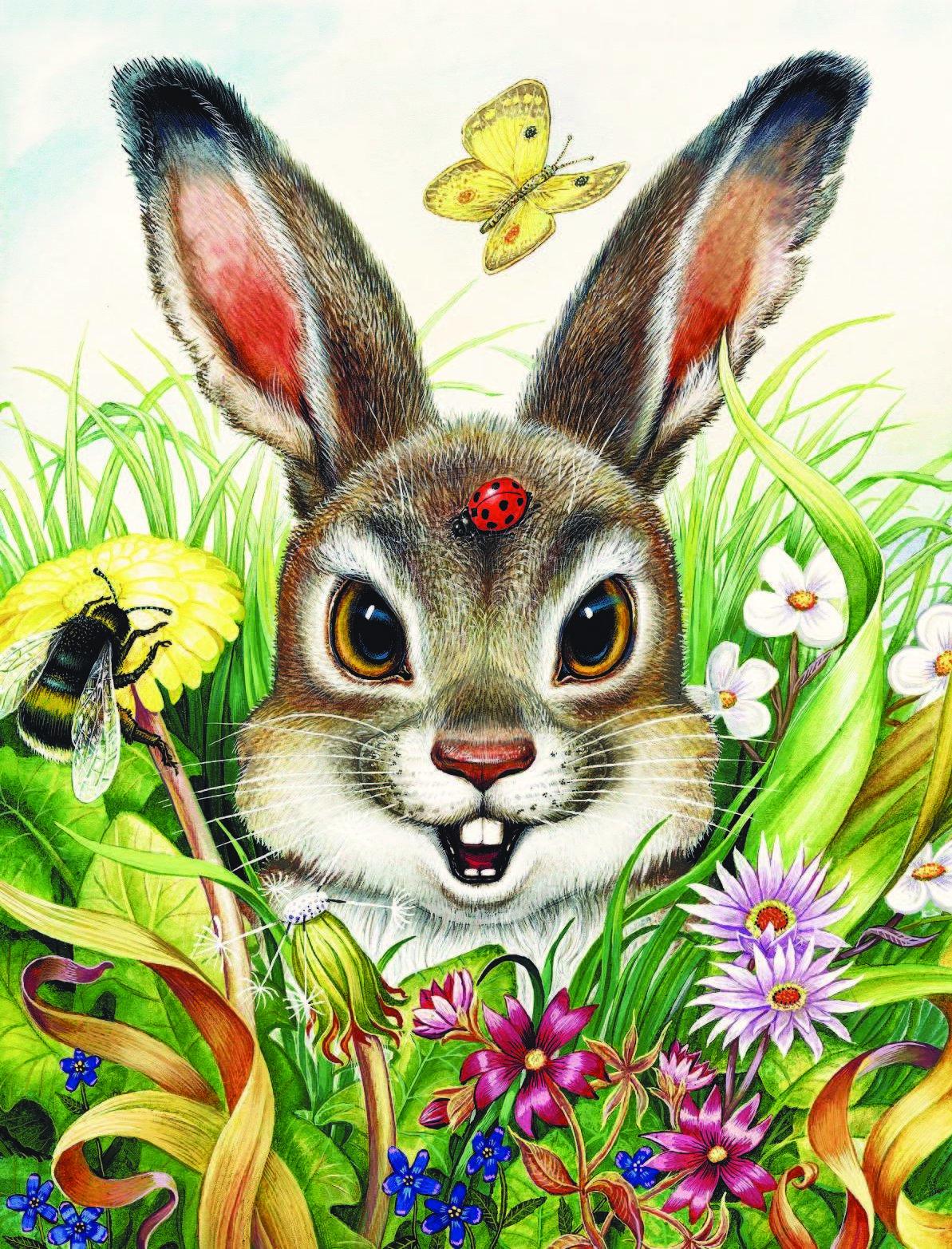 Картинки из детских сказок с зайцами
