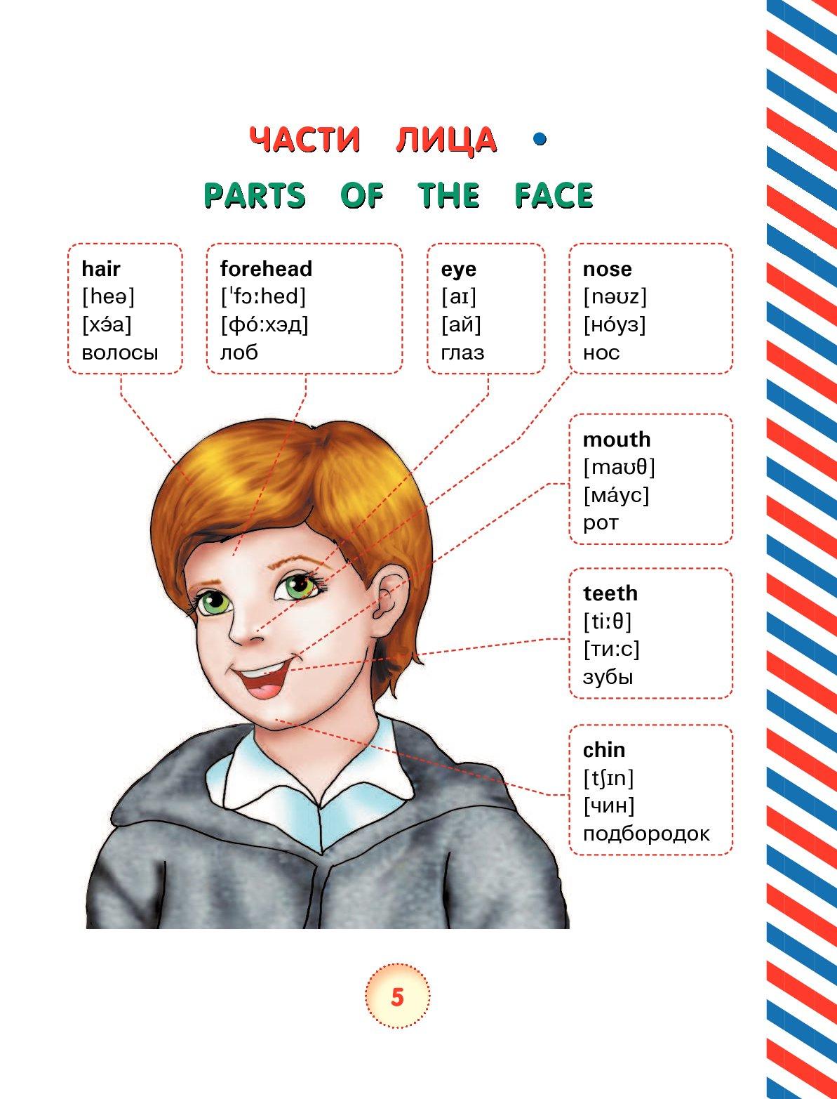 Смыслом, картинки с английскими словами 2 класс