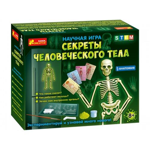Купить Анатомія.Скелет людини, Ранок Креатив