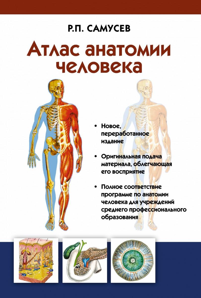 Купить Атлас анатомии человека. Учебное пособие для студентов учреждений среднего профессионального образования, АСТ
