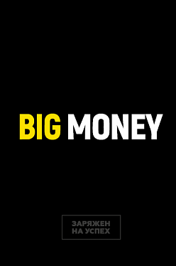 Книга Бизнес-блокнот Big Money